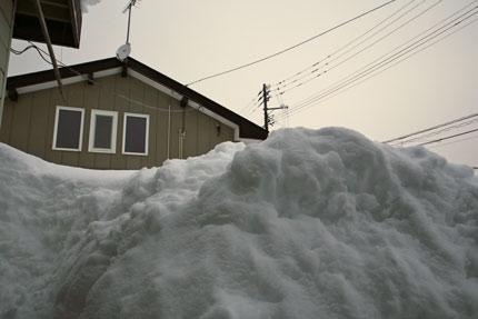 1月12日(火)上越市大貫の雪