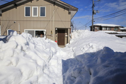 1月18日(月)上越市大貫の雪
