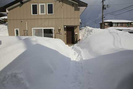 1月30日(土)、上越市大貫の雪