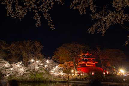高田城三重櫓と桜