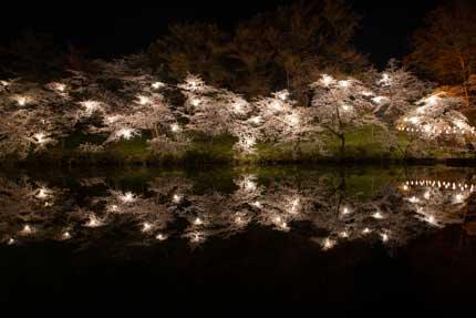 お堀に映る夜桜