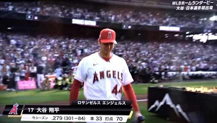 MLB The Home Run Derby