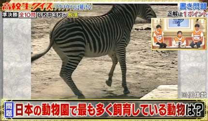 日本の動物園で最も多く飼育している動物は?