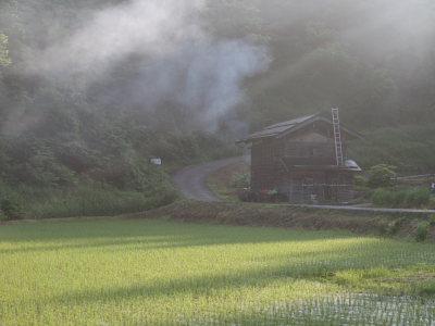 のどかな田舎の朝の風景