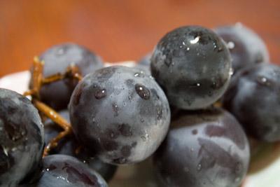 秋の味覚葡萄