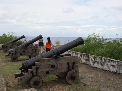 この地について、考える大砲