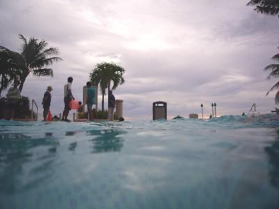 宿泊先ホテルのプール