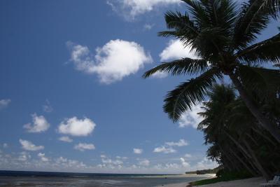 青い海、あおい空、そして椰子の実と白い砂浜