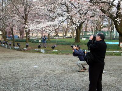 大勢のカメラマン20070408