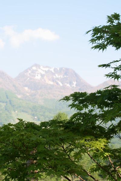 妙高山と新緑