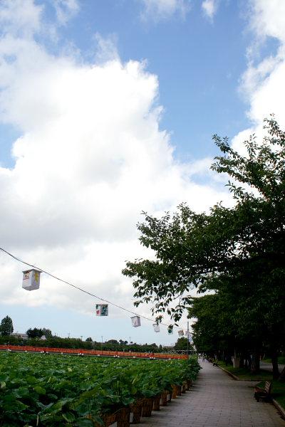 高田城址公園のはす祭り