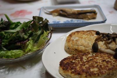 豆腐ハンバーグとサラダと煮魚